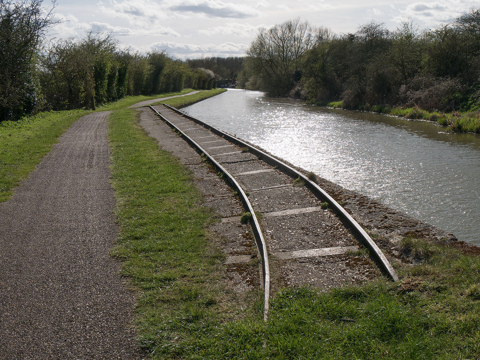 Mysterious tracks curve away from the canal