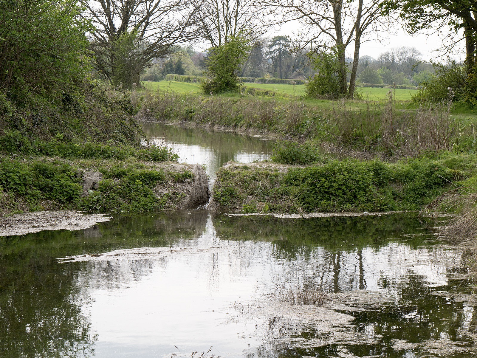 This section of the canal was recently re-watered to a low level lending completion of other works