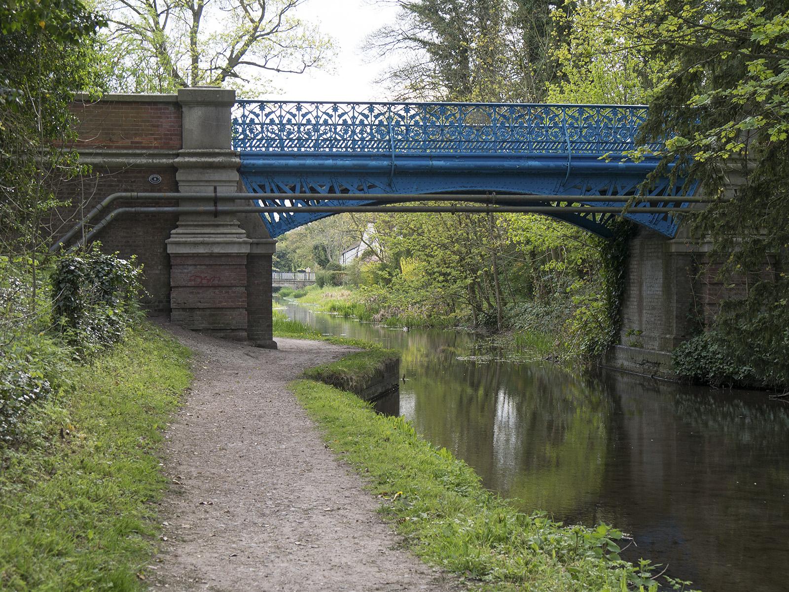 Rothschild bridge