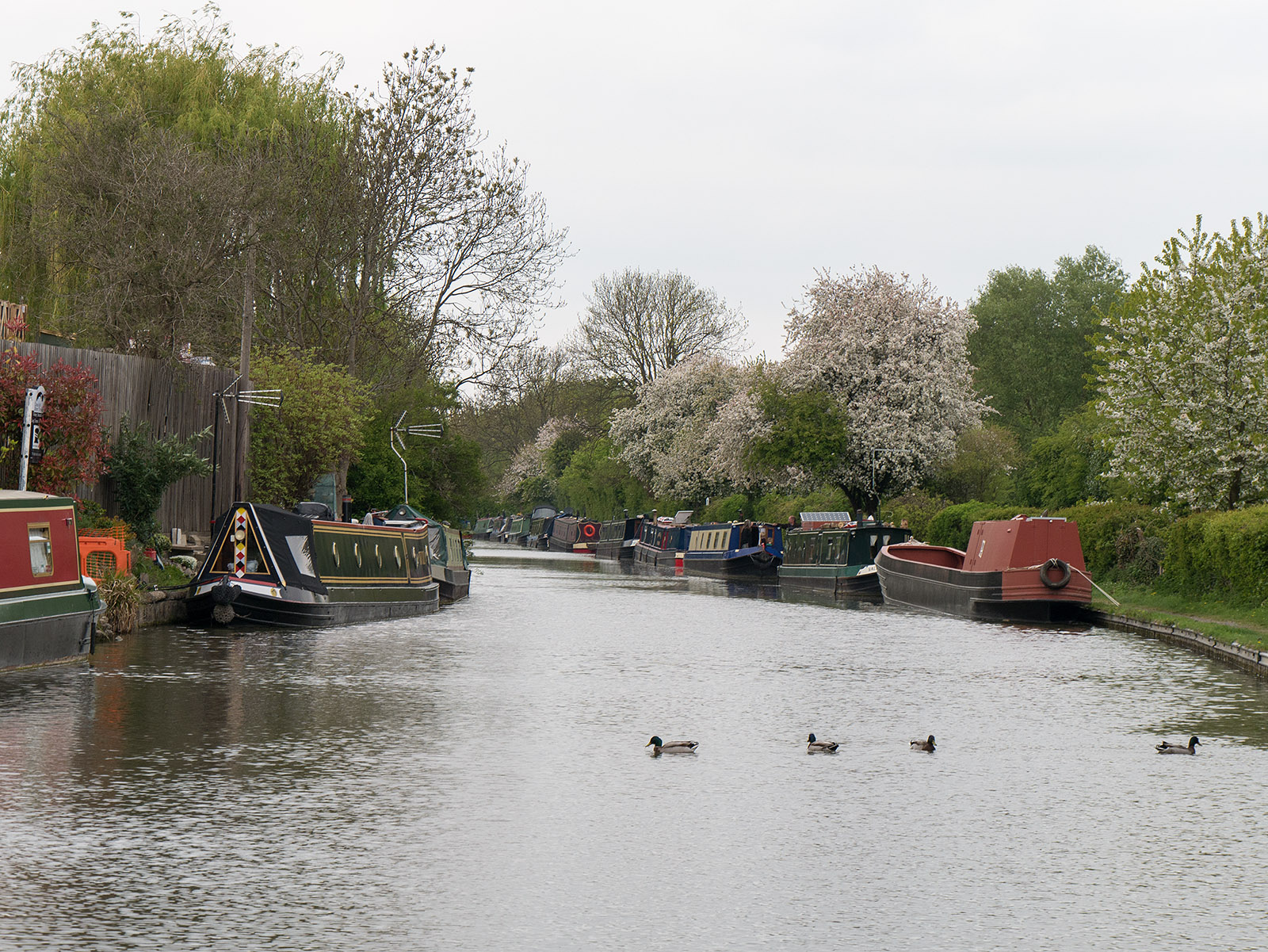 Looking north from Fenny Stratford lock