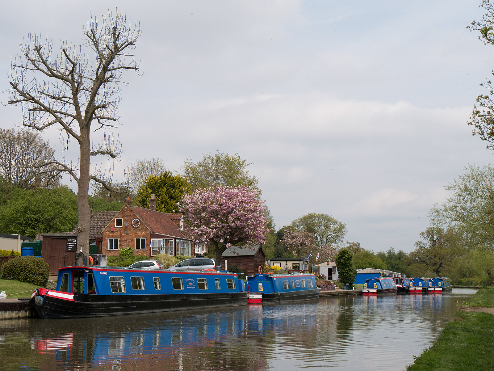 Canal boats for hire