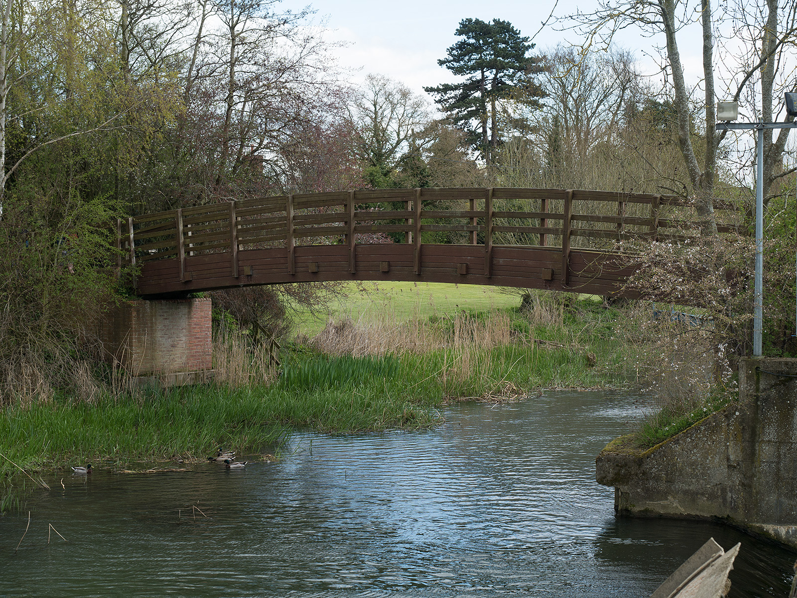 The path then crosses a wooden bridge.