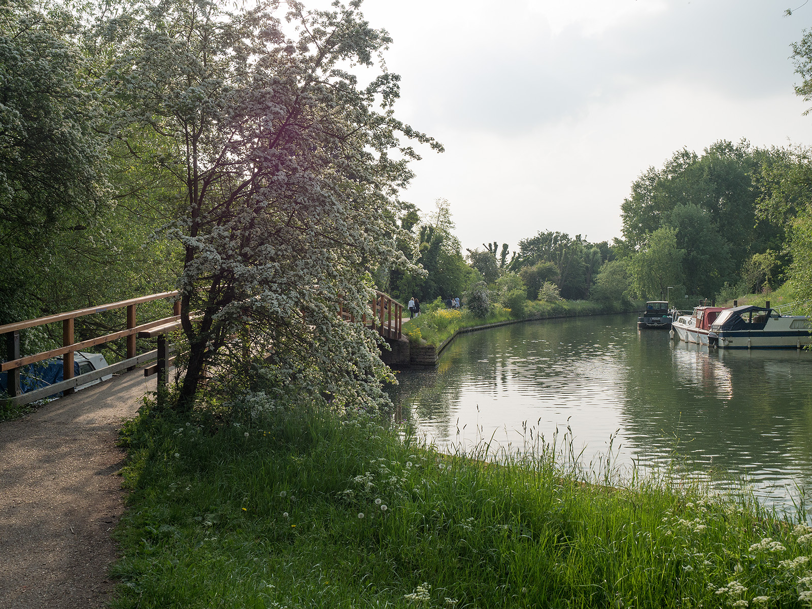 Bridge near Bodleian libraries