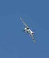 eglc-29.jpg