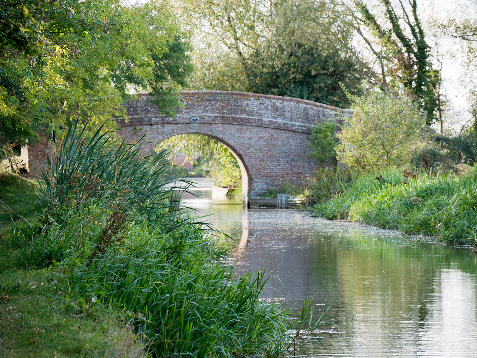 The breeze trickles the surface of the water as an old brick bridge comes into view.