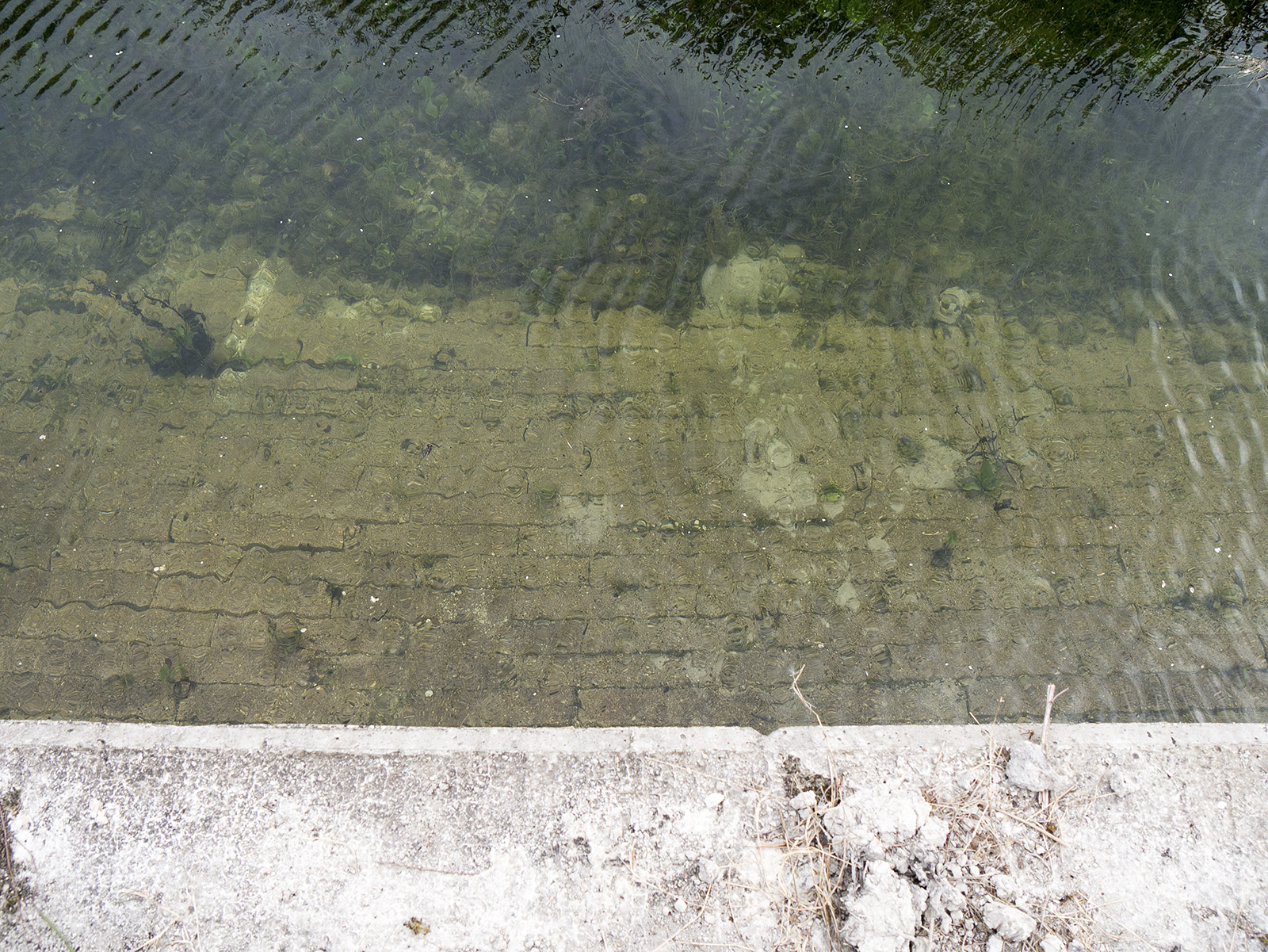 Clear water showing the recent work below the low water level