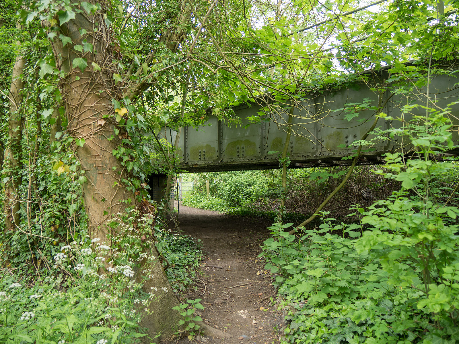 Underneath the railway after Shiplake