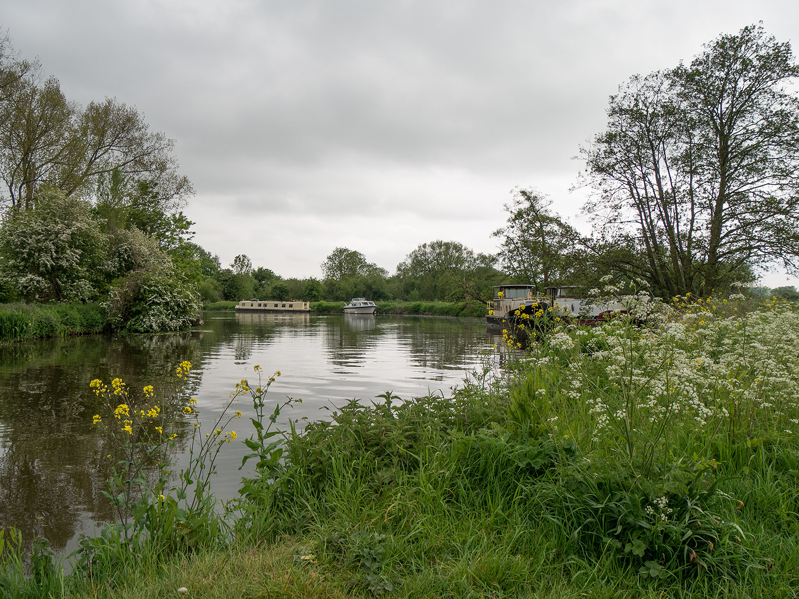 Bends in the river near Hallsmead Ait