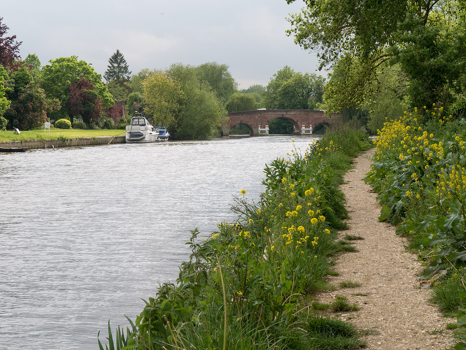 Approaching Sonning bridge