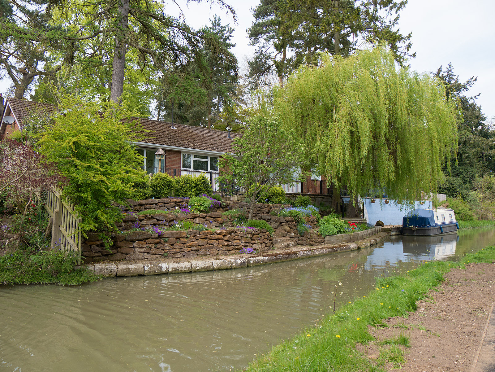 House with willow beside the narrowed canal