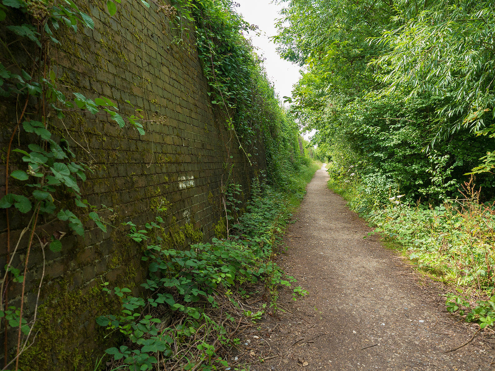 Beside the mainline railway for a while