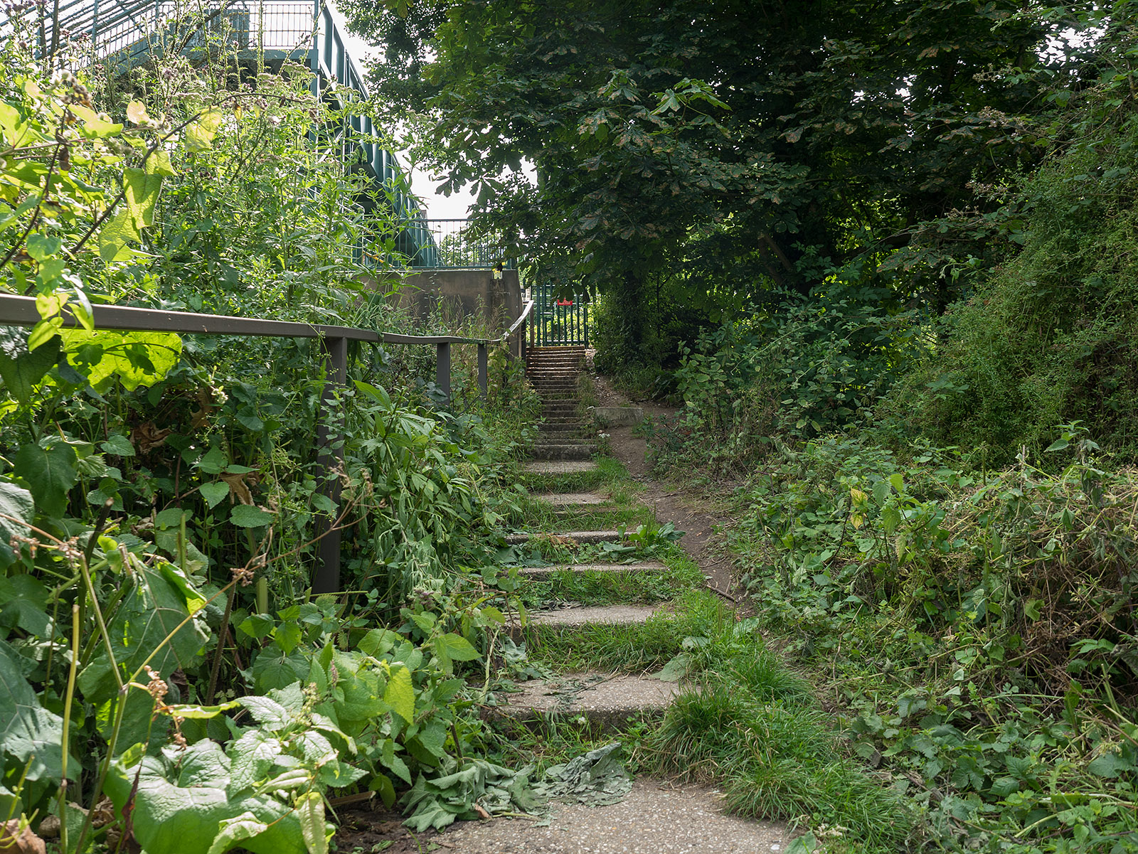 Diversion away from the river west of Tilehurst station, due to inaccessible path through Purley