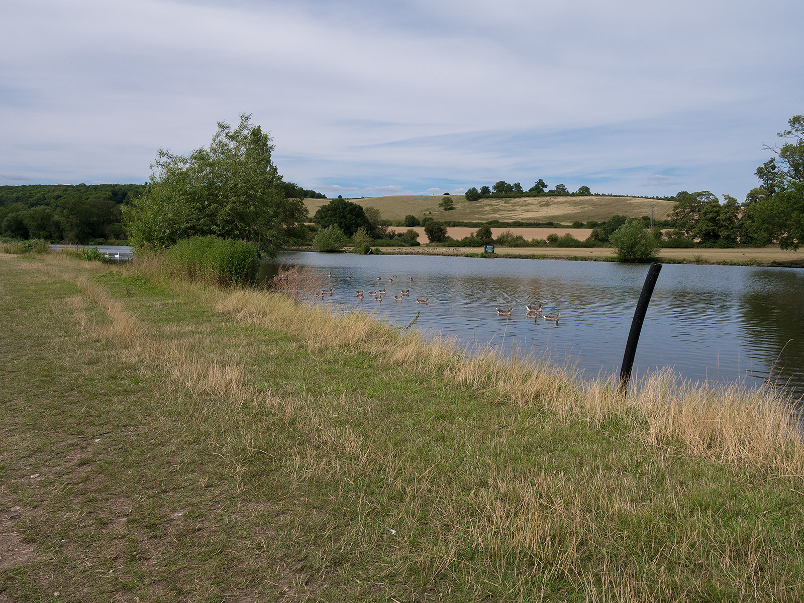 Return to meadows after Mapledurham Lock