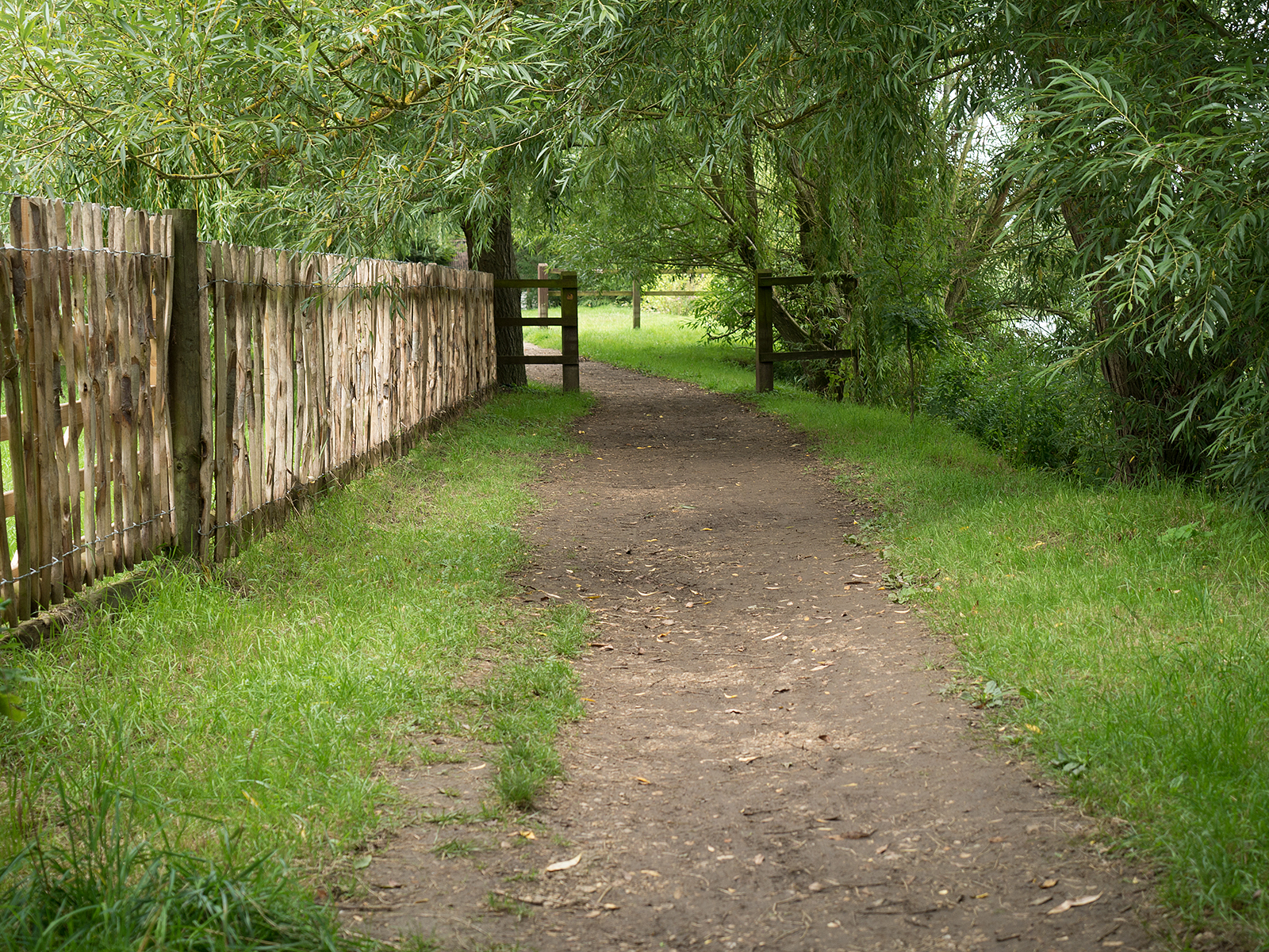 Path crossing the rear of some private properties in south Wallingford