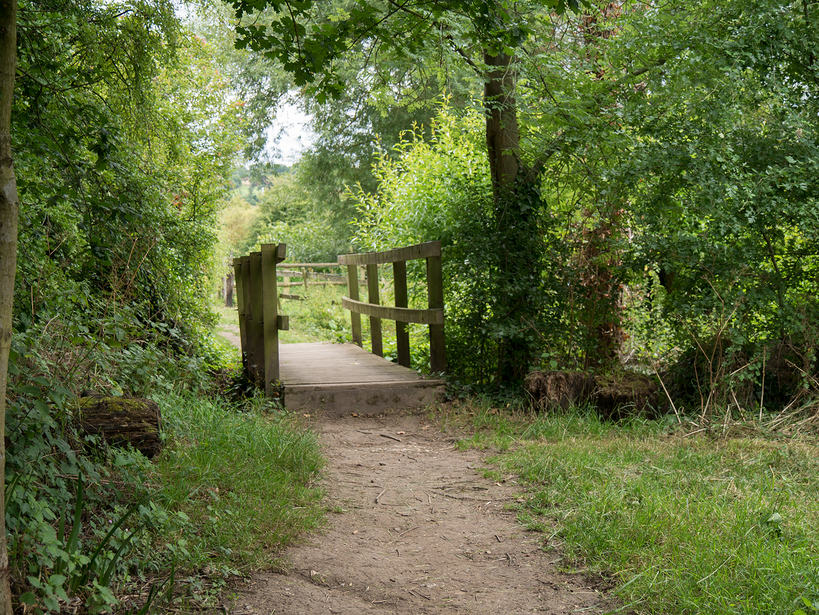 Small bridge helps the path return towards the riverside