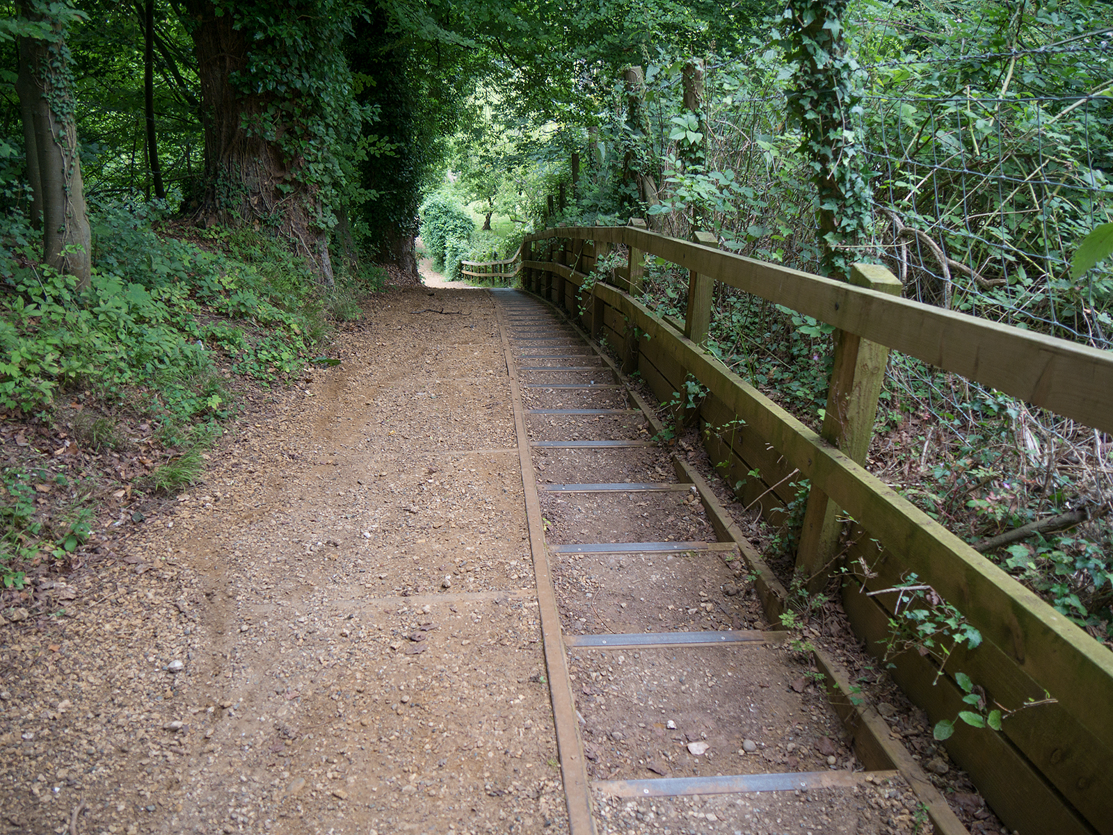Steep slope downwards has newly added steps for safety