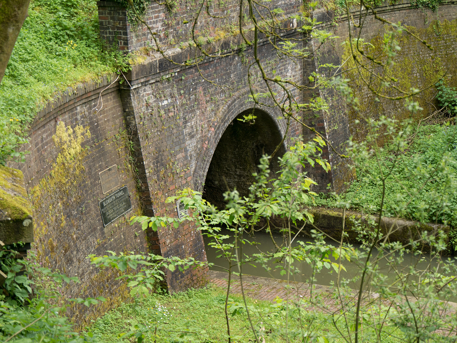Looking down on the northern entrance to Blissworth tunnel